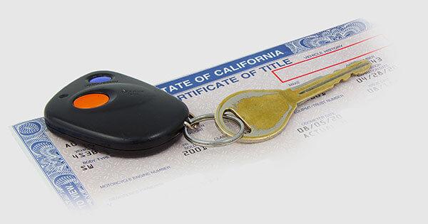 License Services